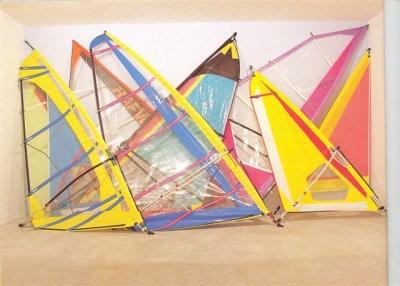 <b>Voiles de planche</b> (1998)